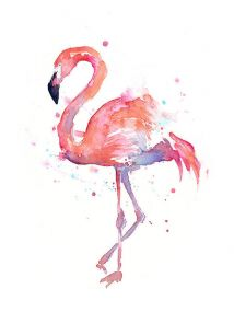 The True Story of the Flamingo